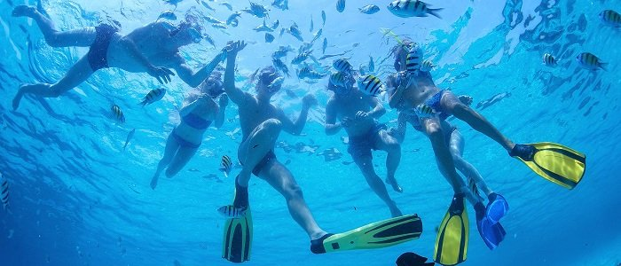 Cozumel includes water activities like snorkeling