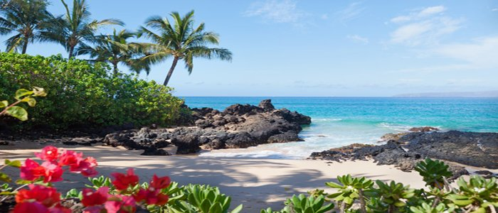Hawaii honeymoon beach