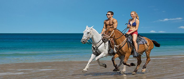 enjoy riding on your honeymoon
