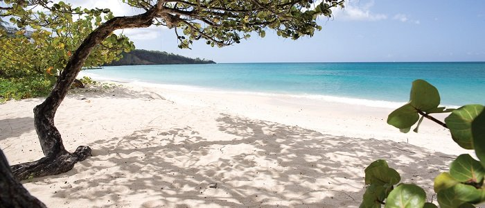 Grenada Honeymoon all inclusive travel