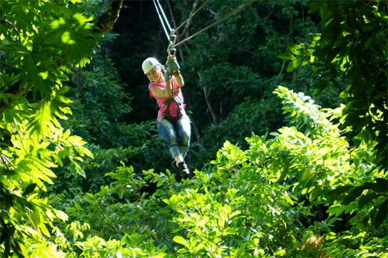 Jamaica Zip Line Tours put a little zip in your Jamaica honeymoon