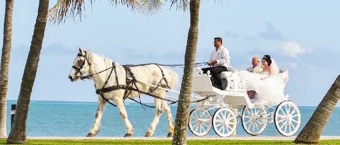 top 10 all inclusive wedding resorts by destinations
