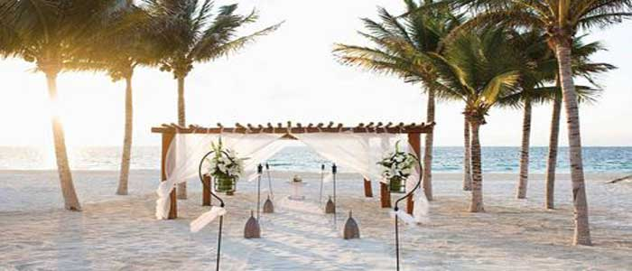 Book your destination wedding at Excellence Oyster Bay