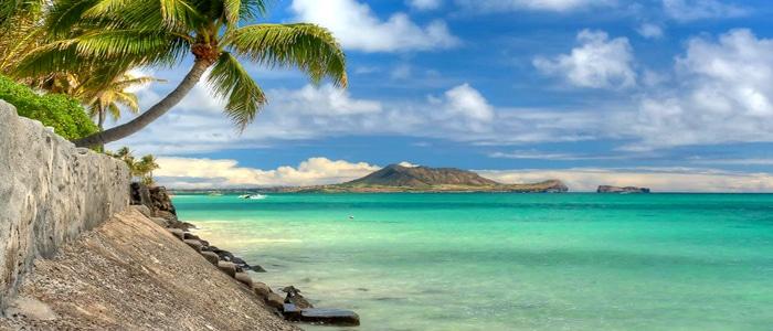 Best Hawaii Honeymoon And