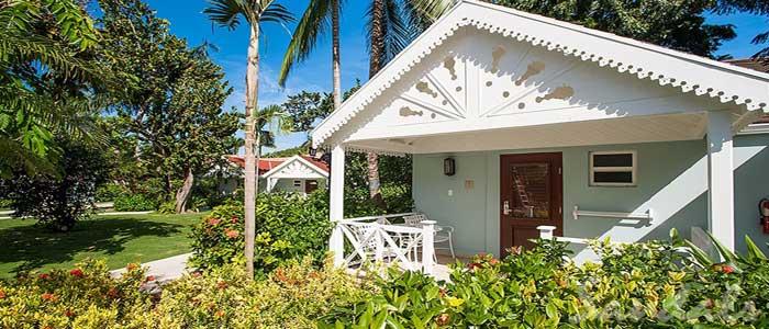 Caribbean Honeymoon Premium - HP